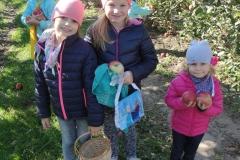 Wycieczka do Sadów owocowych w Bęczkowicach